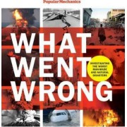 What Went Wrong by William Hayes
