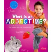 What Is an Adjective? by Gail Saunders-Smith