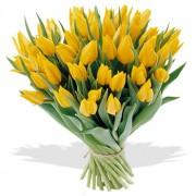 Bos Gele Tulpen