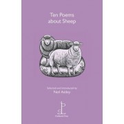 Ten Poems About Sheep by Neil Astley