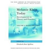 Melanie Klein Today: Mainly Practice Volume 2 by Elizabeth Bott Spillius