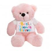 Pink 2 feet Big Teddy Bear wearing a Best Friends Forever T-shirt