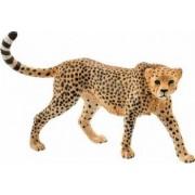 Figurina Schleich Female Cheetah