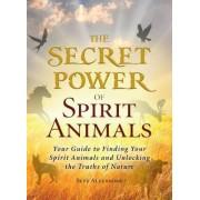 The Secret Power of Spirit Animals by Skye Alexander