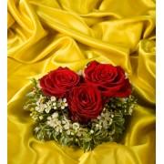 3 Trandafiri romantici