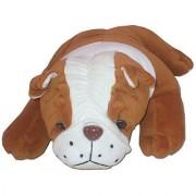 Cute Bull Dog 10