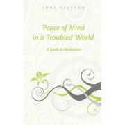 Peace of Mind in a Troubled World by Imre Vallyon