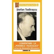 Comentarii la Poemele Filocalice scrise de Alexandru Mironescu- Stefan Todirascu
