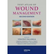 Text Atlas of Wound Management by Vincent Falanga