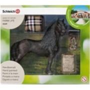 Figurina Schleich Horse Care Set Frisian Exclusive