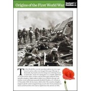 Origins of the First World War by Instant Guides