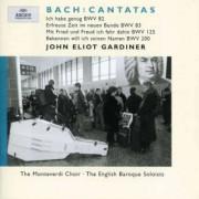 J.S. Bach - Cantatas Bwv82,83,125,200 (0028946358528) (1 CD)