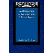 Contemporary Native American Political Issues by Troy R. Johnson