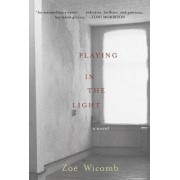 Playing in the Light by Zoe Wicomb