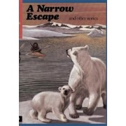 First Aid in English Reader D - A Narrow Escape: Narrow Escape Readers Bk. D by Angus Maciver