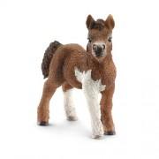 Schleich Shetland Pony Foal Toy Figure