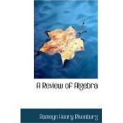 A Review of Algebra by Romeyn Henry Rivenburg