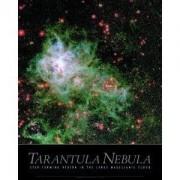 Poster Nebuloasa Tarantula