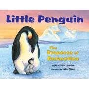 Little Penguin by Jonathan London