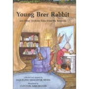 Young Brer Rabbit and Other Trickster Tales from the Americas by Jaqueline Shachter Weiss