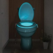 Bright Bowl Motion Activated Toilet Night Light