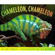 Chameleon, Chameleon by Joy Cowley