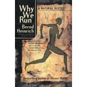 Why We Run by Bernd Heinrich