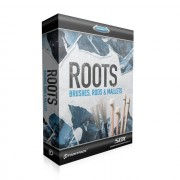 Toontrack - SDX Roots: Brushes, Rods & ... Superior Drummer 2 Library