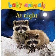 Baby Animals: At Night by Kingfisher