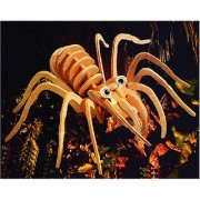 Puzzled Tarantula Wooden 3D Puzzle Construction Kit