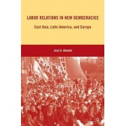 Labor Relations in New Democracies by Jose A. Aleman