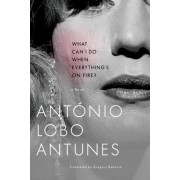 What Can I Do When Everything's on Fire? by Antonio Lobo Antunes