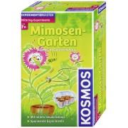 Set experimente grădina de mimoze Kosmos