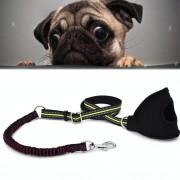 Nieuwe stijl honden Nylon reflecterende Handheld touw verstelbare telescopische tractie Lead Leash grootte: L aanpasbare bereik: 2*(110-172cm) (groen + paars)