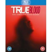 HBO True Blood - Temporada 6