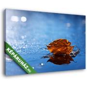 Őszi falevél az esőben (40x25 cm, Vászonkép )