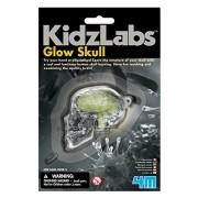 4M KidzLabs Human Skull and Brain - Glow Skull Keyring