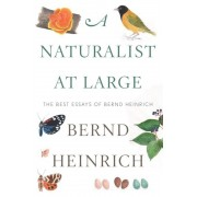 A Naturalist at Large: The Best Essays of Bernd Heinrich, Hardcover