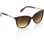 Joe Black Oval Sunglasses(Brown)