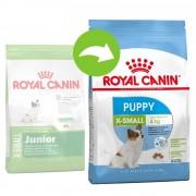 Royal Canin X-Small Puppy / Junior - 2 x 3 kg - Pack Ahorro