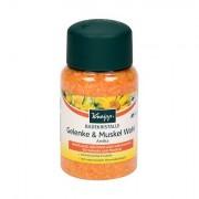 Kneipp Mineral Bath Salt Joint & Muscle sale da bagno 500 g unisex