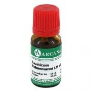 ARCANA Dr. Sewerin GmbH & Co.KG Arzneimittel-Herstellung CAUSTICUM HAHNEMANNI LM 6 Dilution 10 ml