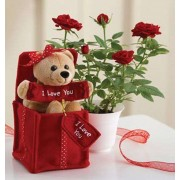 I Love You Teddy Bear in Red Surprise Box