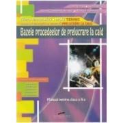 Bazele procedeelor de prelucrare la cald - Clasa a 10-a - Manual - Ion Neagu Ioana Aries