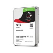 DD INTERNO SEAGATE IRONWOLF 3.5 12TB SATA3 6GB/S 7200RPM 256MB 24X7 HOT-PLUG P/NAS 1-8 BAHIAS