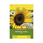 """Seminte pentru flori FloraSelf, floarea-soarelui """"Snack"""""""