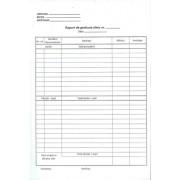 Raport de gestiune zilnic autocopiativ 100 file