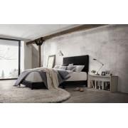 Acme 25730Q Lien black faux leather queen bed set