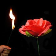 AST Works 1xStage Close up Magic Torch Rose to Fire Trick Flame Appearing Red Flower Xmas