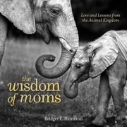 The Wisdom of Moms: Love and Lessons from the Animal Kingdom, Hardcover/Bridget E. Hamilton